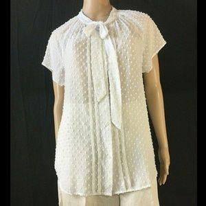 ANN TAYLOR LOFT Women's Button Down Blouse